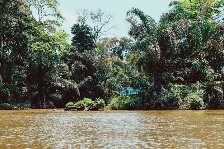 Tortuguero Nationalpark – Pura Vida an der Karibikküste von CostaRica